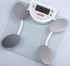 Body fat scale 2004E